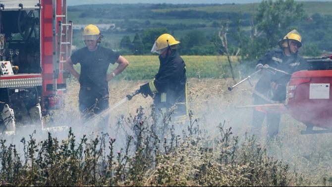 """Сухи треви горят край санданското село Дамяница в близост до АМ """"Струма"""""""