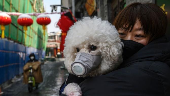 СЗО удължи извънредното положение заради пандемията от COVID-19