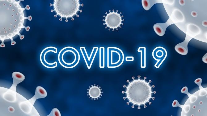 204 новозаразени с COVID-19 у нас, рекорден брой починалите за денонощие - 16