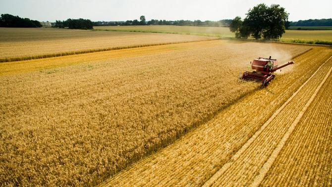 Жътвата в Ловешка област е приключила със среден добив при пшеницата 522 кг от декар
