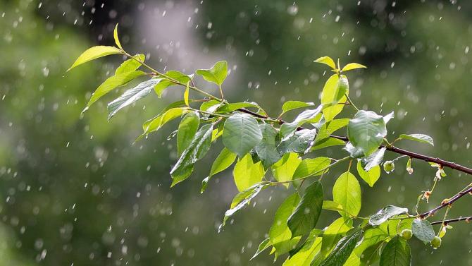 Над Западна България утре ще се развива купеста и купесто-дъждовна