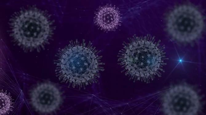 Коронавирусът уврежда черния дроб на всеки пети заразен