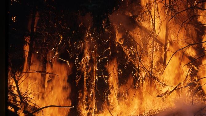 Най-малко 22 човека са пострадали от горските пожари, обхванали от