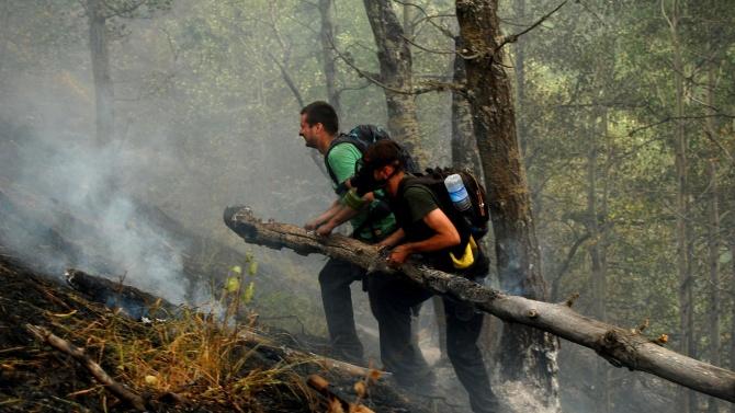 """Пожарът в района на военен полигон """"Корен"""" е локализиран и"""