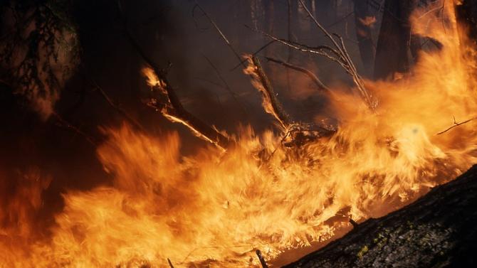 Вертолет се включи в потушаването на пожара в гористата местност между  Лесово и Присадец