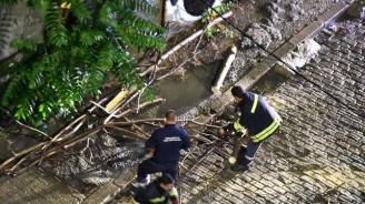 Силна буря удари София, получени са 15 сигнала за паднали клони и дървета