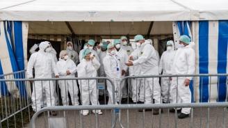 Дания затвори голяма кланица заради огнище на коронавирус