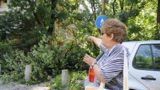 След бурята в София: Десетки са сигналите за паднали клони и разрушени покриви