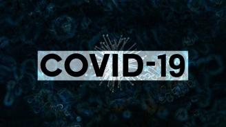 Трима мъже са новите жертви на коронавируса в страната за денонощието