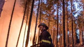 Бедствено положение  в община Свиленград заради пожари