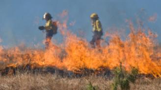 Над 50 000 дка горят в Тополовградско и Свиленградско