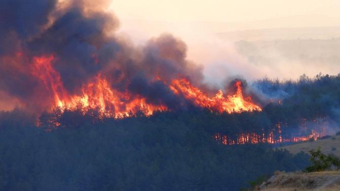 Нов пожар на 500 декара площ е възникнал в Хасковско