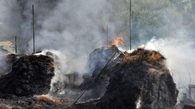 ДФЗ призовава стопаните да уведомят за опожарените си площи