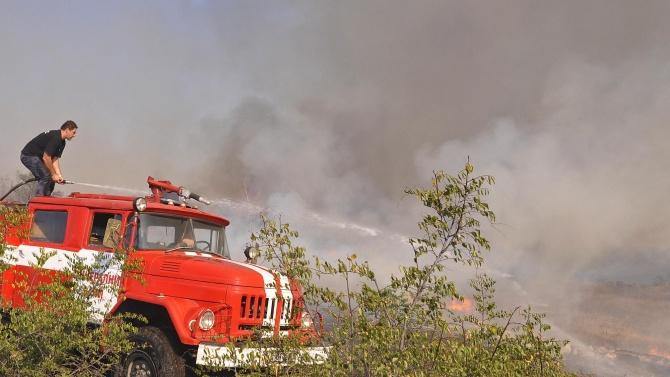 Широколистна гора пламна в Хасковско