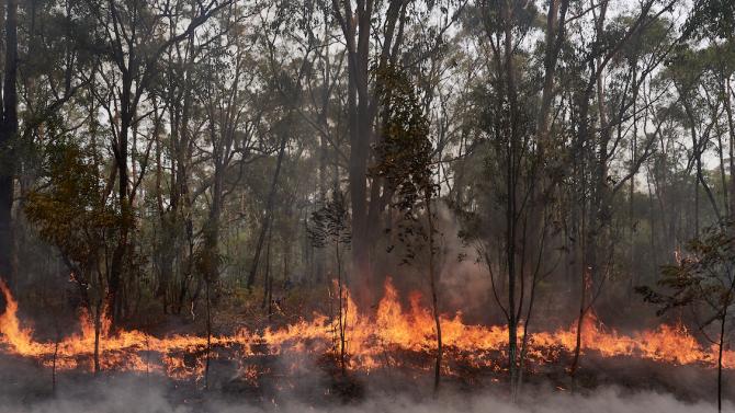 Нов пожар пламна  край Хасково