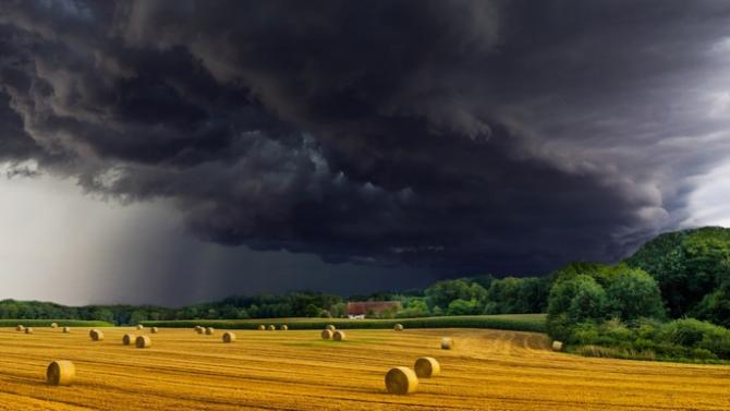 От Асоциацията на земеделските производители определят рентите като много високи