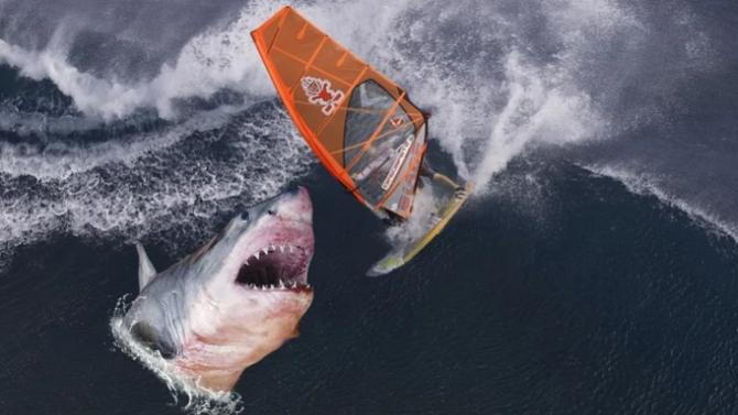 Сърфист скочи върху гърба на акула, за да спаси жена