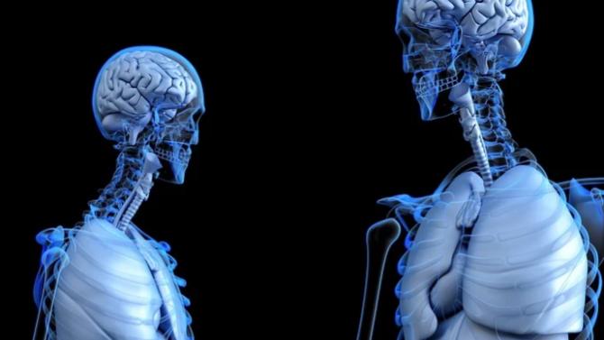 Човешките органи са замърсени с микропластмаса