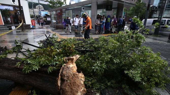 Тайфунът Бави повреди сгради и наводни пътища на Корейския полуостров