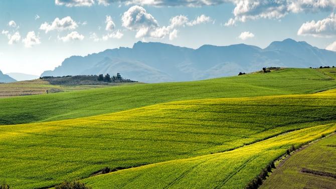 Онлайн преброяването на земеделските стопанства в страната започва от днес