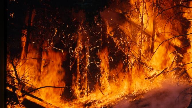 Два големи пожара горят в Старозагорска област