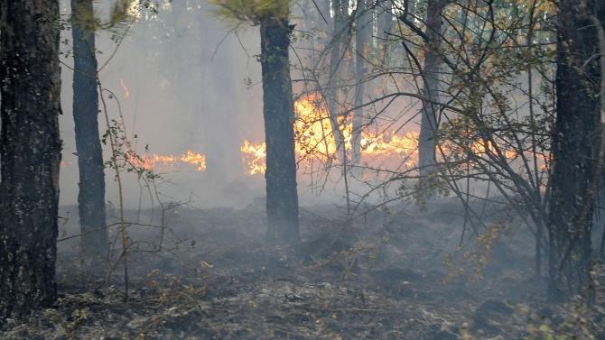 Огнеборците се борят за овладяването на два пожара в Старозагорско
