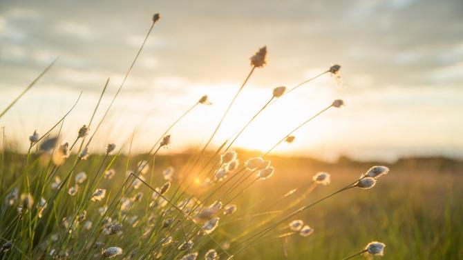 Топъл и слънчев ден за днешния празник