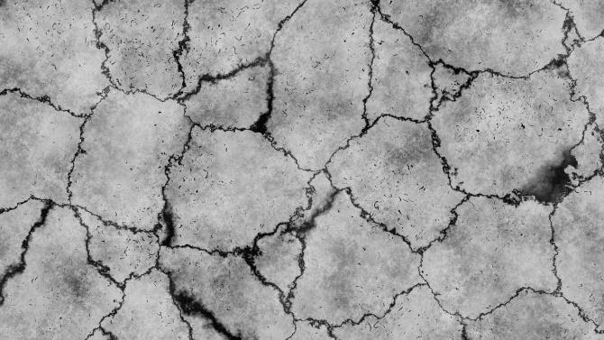 Невижданата суша - проблем за реколтата в Добричко