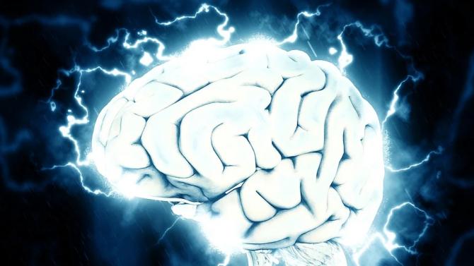 Липсата на гравитация променя мозъците