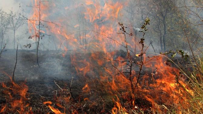 В област Хасково огнеборците потушават три пожара