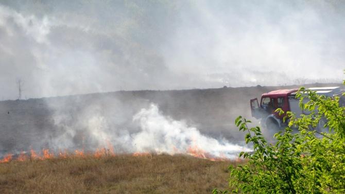 Пожарът край село Граничар е овладян