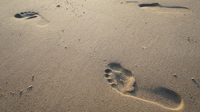 Учени откриха отпечатъци от човешки ходила и от животни на
