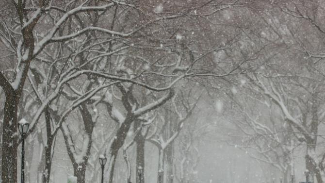 Първият сняг падна днес в Екатеринбург, съобщава РИА Новости. Мокрият