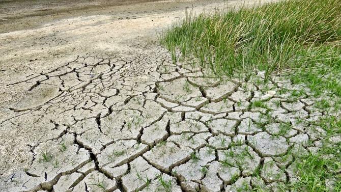 Дейвид Атънбъро: Пандемията показва нуждата от глобален отговор на климатичните промени