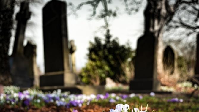 Нов мюсюлмански гробищен парк ще има в ловешкото село Александрово