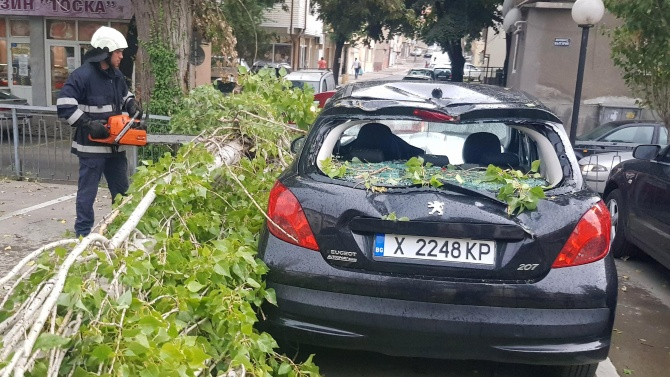 Дърво падна върху кола в Хасково