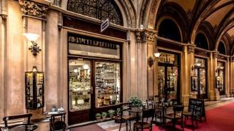 Виена задължи собствениците на заведения да регистрират посетителите си
