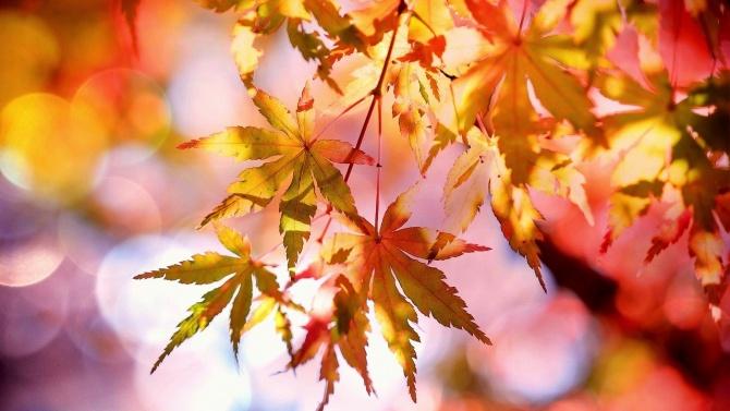 Есенното време идва