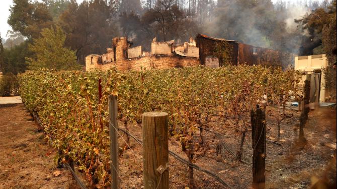 Лозята в долината Напа в Калифорния са обхванати от пожари