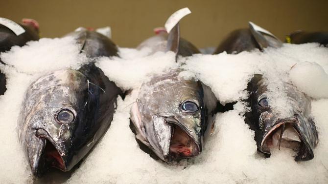 Правителството одобри изменение в Програмата за морско дело и рибарство