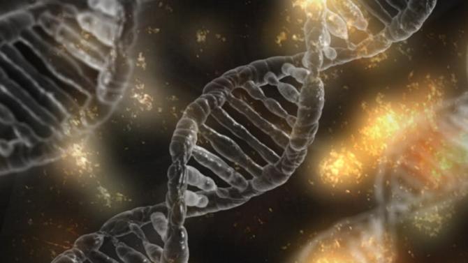 Наследени от неандерталците гени увеличават риска от тежки форми на COVID-19