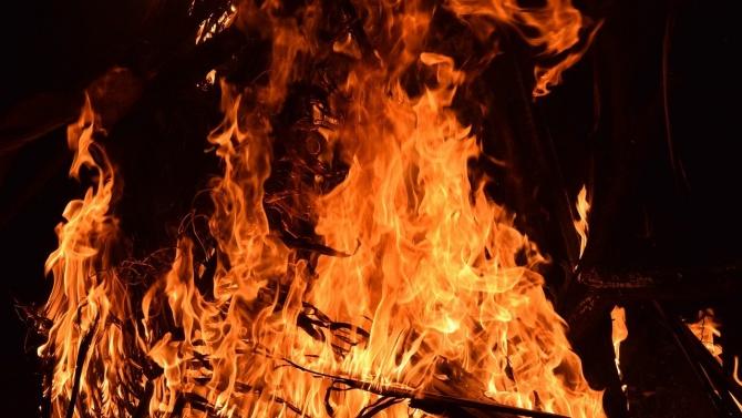 9 са жертвите на горските пожари в Украйна