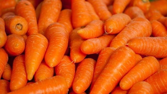 30 тона моркови се озоваха пред университет в Лондон