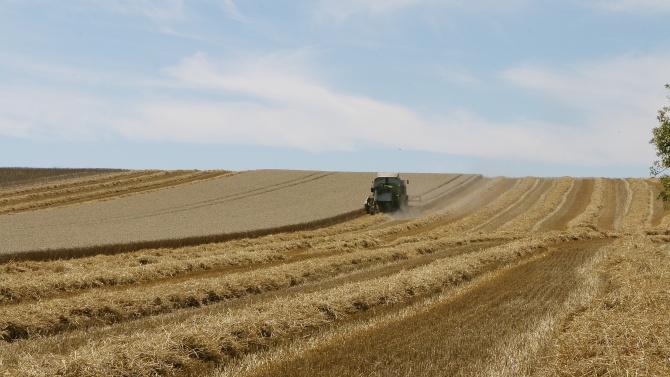 Експерти съветват: Продажбата на земя през есента е най-изгодна