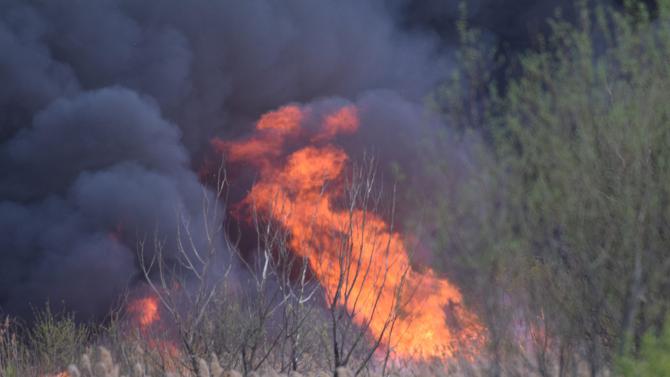 Запалени сухи треви в Румъния задимиха и вмирисаха Русе