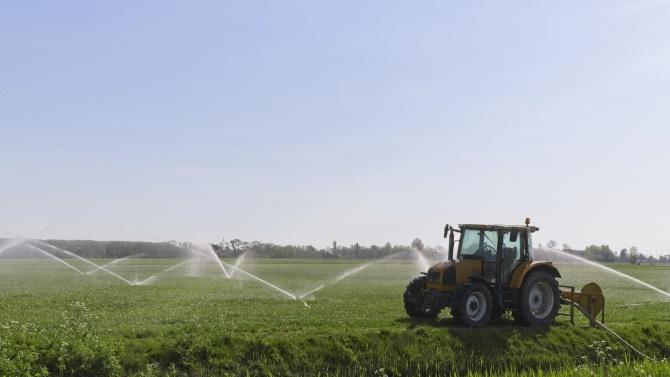 МЗХГ ще стимулира производителите да използват собствени водоизточници за напояване