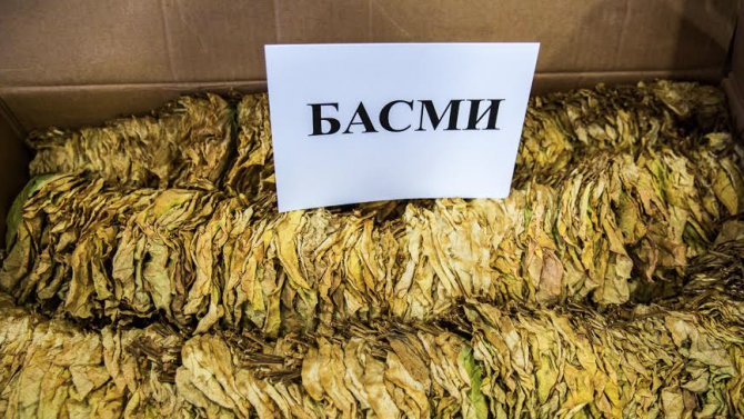 Приключи беритбата на тютюн реколта 2020 в България
