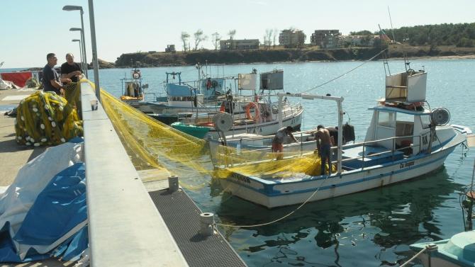 Добър сезон за рибарите край Ахтопол