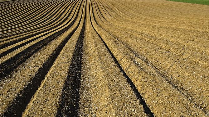 Отпускат се над 10 млн. евро за проекти с иновации в селското стопанство