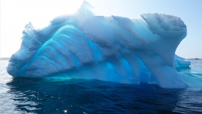 Климатичните промени вече трансформират Нова Зеландия, установява проучване
